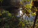 Slunce se odráží v hladině Metuje za podzimem zbarvenými javorovými listy.