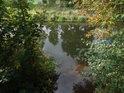Bavorův potok posiluje Metuji zleva nad Bělovsí.